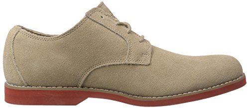 Timberland Ek Stormbuck Lite V Ftm_plain Toe Oxford, Chaussures Oxford homme Marron - Braun (LIGHT BROWN)