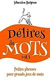 Délires de mots: Petites phrases pour grands jeux de mots (French Edition)
