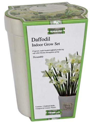 Narciso White Tresamble Anzuchtkasten, aus Keramik, rechteckig, Blumenerde