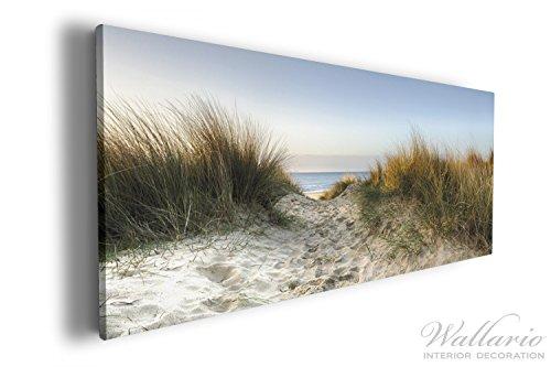Wallario XXXL Riesen- Leinwandbild Weg durch die Dünen zum Strand am Meer - 80 x 200 cm in...