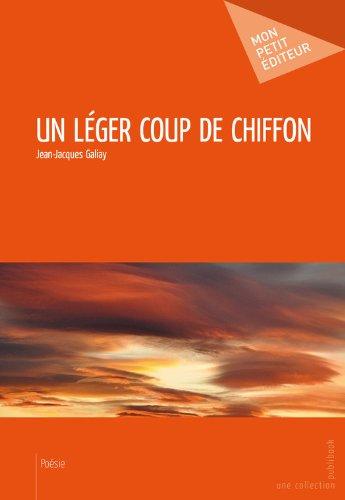 Livres gratuits Un léger coup de chiffon pdf ebook