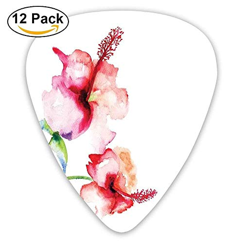 Hibiscus Flowers On Plain Background In Pastel Colors Nature Guitar Picks 12/Pack -