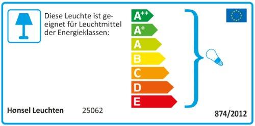 Honsel Leuchten 25062 - Lámpara de techo, color cromado con cristales tipo prisma