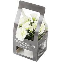 Closer To Nature FP007CC - Clavel artificial en caja de regalo, 15 cm, color blanco