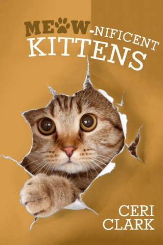 Meow-nificent Kittens: The Secret Personal Internet Address & Password Log Book for Kitten & Cat Lovers: Volume 1 (Disguised Password Book Series)