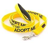 ADOPT MOI Jaune Couleur Coded Nylon 1,8 mètres Luxe poignée rembourrée supplémentaire Long Leash Dog (New domicile nécessaires) Faire un don à votre organisme local...