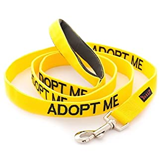 ADOPT ME (I Need A New Home) Yellow Colour Coded 60cm 1.2m 1.8m Neoprene Padded Handle Dog Leads PREVENTS Accidents By… 11