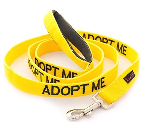 adoptieren-mich-gelbe-warn-hund-farbcodierte-edles-personalisierte-60cm-12m-18m-leine-zu-ihrem-lokal