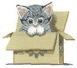Chat en boîte, 28fils Evenweave kit de point de croix