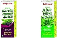 Baidyanath Karela Jamun Juice - 1 L & Baidyanath Aloe Vera Juice -