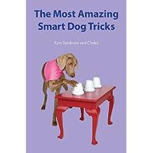 The Most Amazing Smart Dog Tricks