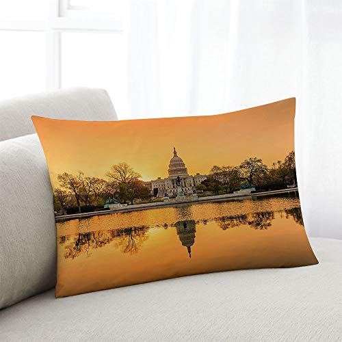 odin sky Kissenbezug USA Washington DC Apricot Ginger Home Pillow Kissenbezug Kissenbezüge für Sofa Sessel Schlafzimmer Wohnzimmer, 45x45CM - Ginger Bath Creme