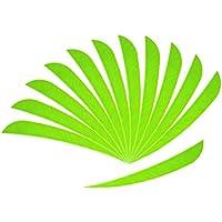 P Prettyia 12 Piezas de Plumas de Flecha Accesorio de Tiro con Archero Entrenamiento Duro - Verde Fluorescente