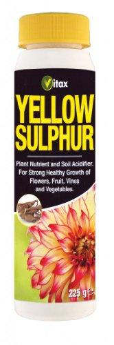 Vitax Soufre Jaune 225g robuste une croissance Saine de vigne Fleurs Fruits & Légumes