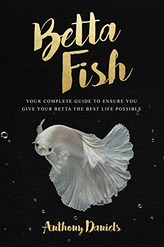 Betta Fish: Your Complete Guide to Ensure You Give Your Betta the Best Life Possible