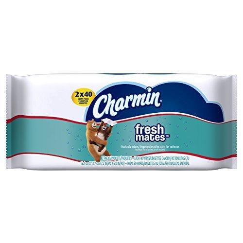 charmin-freshmates-flushable-wipes-2-pk-by-charmin