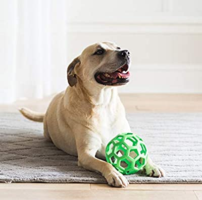 WJ JW Hol-Ee Roller Large By Dog Toy Chew And Bite, L by JW