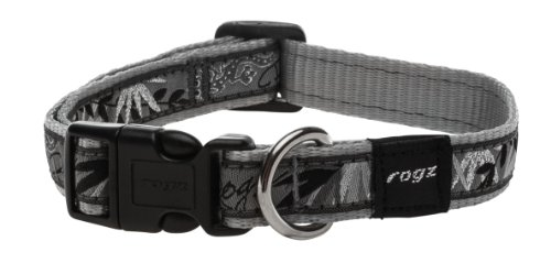 rogz-scooter-collare-dargento-gecko-16mm-x-26-40-cm