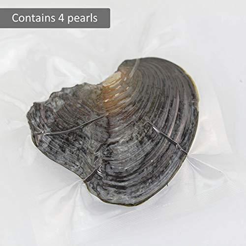 Gioielli delle donne Rotonda Perla Decorazione Confezionamento sottovuoto cozza avvolto singolarmente Ostrica con perle vere Buon regalo a caso