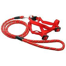 Durable collier de chien Laisse sangle pour chiot Pet,Rond,rouge