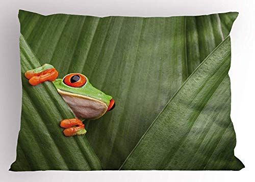 Wamnu Animal Pillow Sham, Red Eyed Tree Frog Crowling Between Leaves Tropical Jungle Rainforest Night Art Print, Decorative Standard Queen Size Printed Pillowcase, 30 X 20 inches, Green -