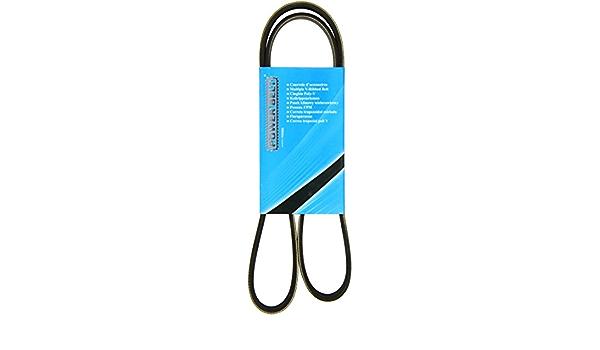 Mapco V Ribbed Belts 251250 Auto