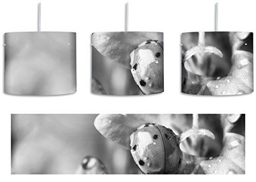 Monocrome, Kleiner Marienkäfer auf zarter Blüte inkl. Lampenfassung E27, Lampe mit Motivdruck, tolle Deckenlampe, Hängelampe, Pendelleuchte - Durchmesser 30cm - Dekoration mit Licht ideal für Wohnzimmer, Kinderzimmer, (Flügeln Bug Lady)