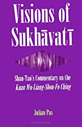 Visions of Sukhavati: Shan-Tao's Commentary on the Kuan Wu-Liang Shou-Fo Ching (SUNY Series in Buddhist Studies)