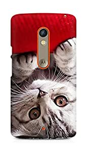 Amez designer printed 3d premium high quality back case cover for Motorola Moto X Play (kitty)