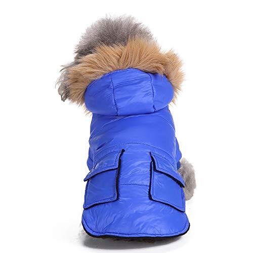 (Fenverk Wasserdicht Haustier Hund Kleider Winter Warm Gepolstert Mantel Weste Jacke Atmungsaktiv Weich Luft HüNdchen Geschirr Katze Kleidung KostüM Bekleidung Künstliches Fell(Blau,XL))