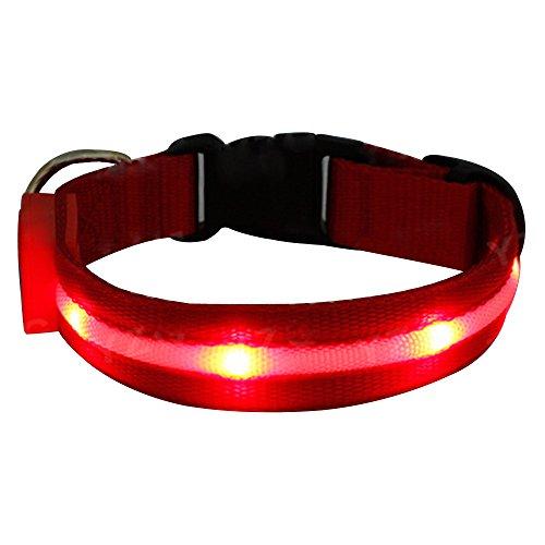Japace® Nylon del collar Recargable USB collar de perro luminoso Practico para la Noche 4 Funciones Parpadeo Lento y Rapido Luz Fija y Apagado S Longitud 35-43cm---Rojo