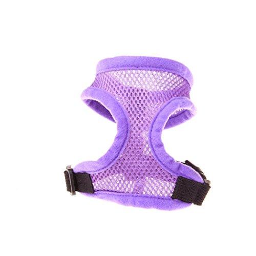 ble Hundegeschirr Verstellbare Haustier Weste Seil Hund Brust Gurt Leine Set Kragen (XS, Lila) ()