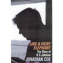 Like a Fiery Elephant: The Story of B.S. Johnson by Jonathan Coe (2004-06-04)