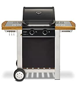 Enders BBQ Gasgrill BALTIMORE, Gas Grill 81496, 2 Guss