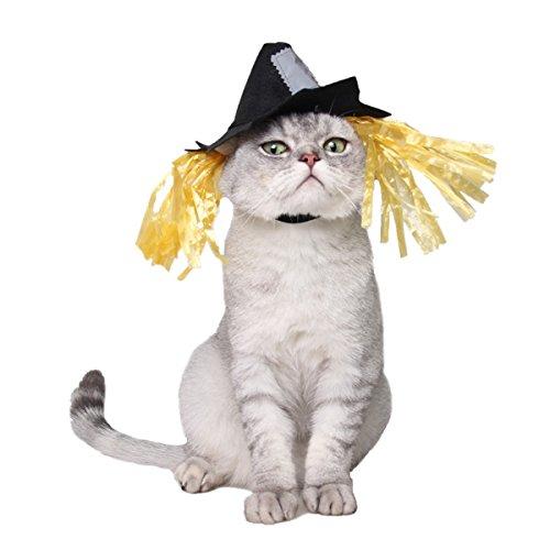Namsan Katze hundekostüm Sailor Kostuem Hut Marine (Strohhut) (Kleine Vogelscheuche Kostüme)