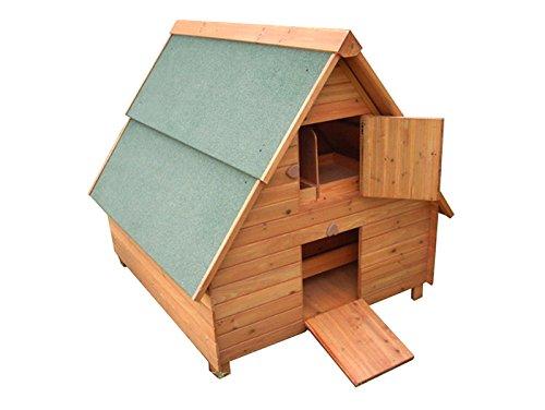 green-jem-pollo-di-legno-casa