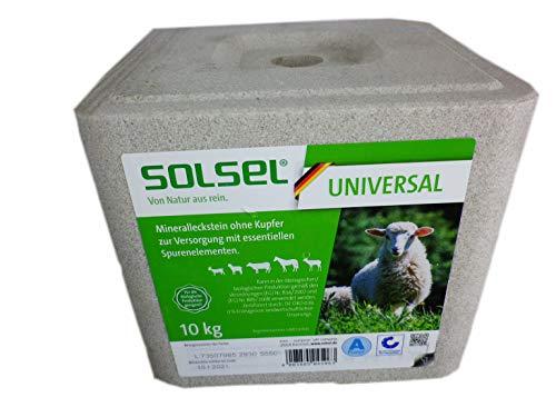 Solsel