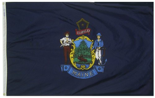 Annin Maine State Flagge, State Flags, 3 by 5 Foot -