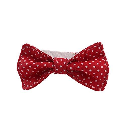 Hundefliege, Fliege für Hunde - Hundeschleife - BASIC (Mit Klettverschluss) (XL, Rot-Weiß gepunktet) (Rot Halsband Weiß Blau)