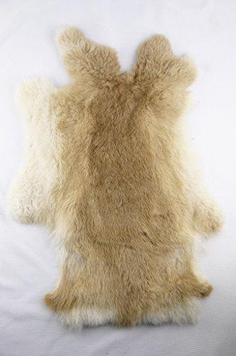 Magic Show echtem Kaninchen Fell Haut Farbe natürlich gegerbt für das Handwerk to172, BROWN, 1 -