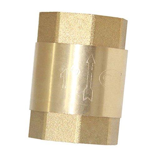1 '' Válvula Retención Compresor Agua Aire Hilo