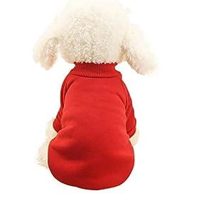 Vetement Chien/Chat Angelof Pull Chien Hiver Habits Pour Chiot Patron Sweat Shirt Pour Chien T Shirt Pour Chien/Chat Bleu Ciel/Rose/Noir/Roug