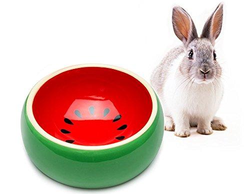 Mkouo Keramiknapf Kleine Nager Futternapf, Ø 13,3 cm, für Wüstenrennmaus, Hamster, Meerschweinchen, Kaninchen, Igel und andere Kleine Tiere, aus Keramik, standfest, kein Annagen möglich