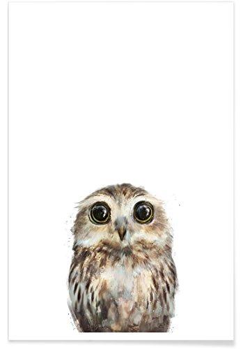 """JUNIQE® Poster 20x30cm Kinderzimmer & Kunst für Kinder Eulen - Design """"Little Owl"""" (Format: Hoch) - Bilder, Kunstdrucke & Prints von unabhängigen Künstlern - Tierbilder - entworfen von Amy Hamilton"""