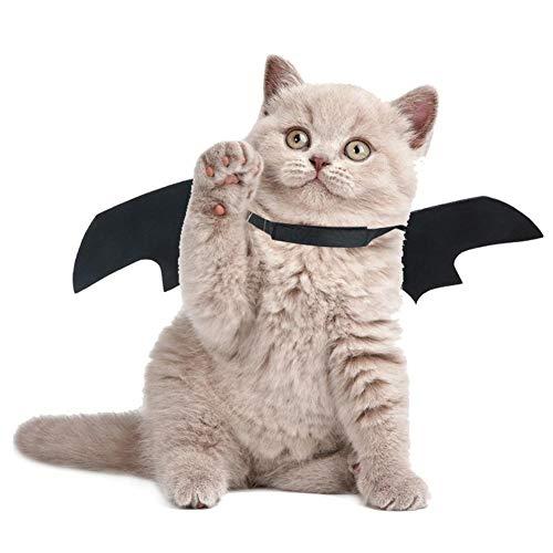 Bloomma Halloween Fledermausflügel Kostüm Hund Katze Fledermausflügel Weste Harness Coole Fancy Party Halloween Dressup Kostüm Outfits Haustier Kleidung fit Little Animal (Best Dress Up Outfits)
