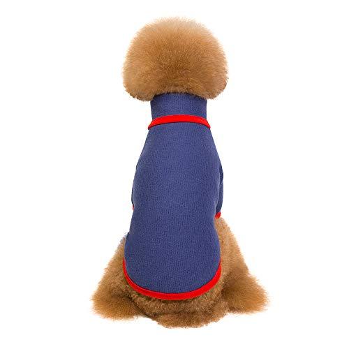 Amphia - Bekleidung Hunde,Pet Kleidung Stehkragen Plus SAMT Pullover - Haustier Hund Welpen warme Winterkleidung Mode TurtleHals Pullover Zwei-Bein-Tuch(Blau,L)