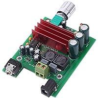TPA3116D2 Placa de amplificador Subwoofer Amplificador de potencia digital 100W AMP Chip de placa Módulo DIY para orador