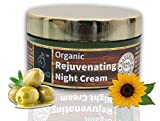 The EnQ 92% Natural 92% Organic Rejuvenating Night Cream || For Anti Aging