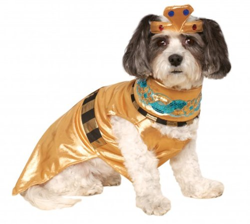 Rubies Cleopatra Pet Queen Of The Nile Costume M