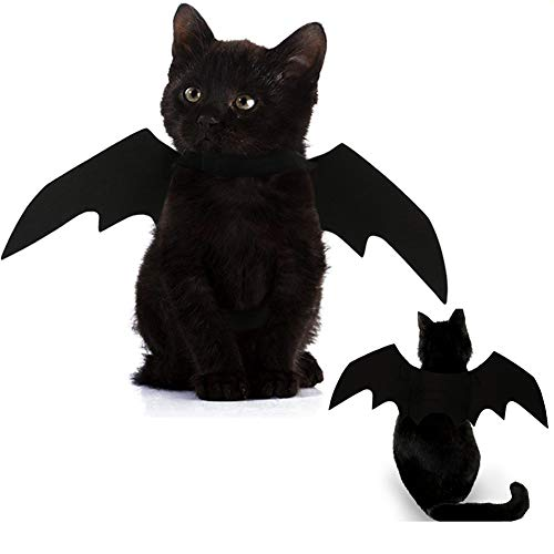 Hunde Kostüm Katzen Fledermaus Oder Für - Glodenbridge Halloween Pet Dog Costume Vampire Wings Fancy Dress Costume Outfit Bat Wings Cats Dogs which Neck Circumference from 24-36cm Bust from 36-42cm